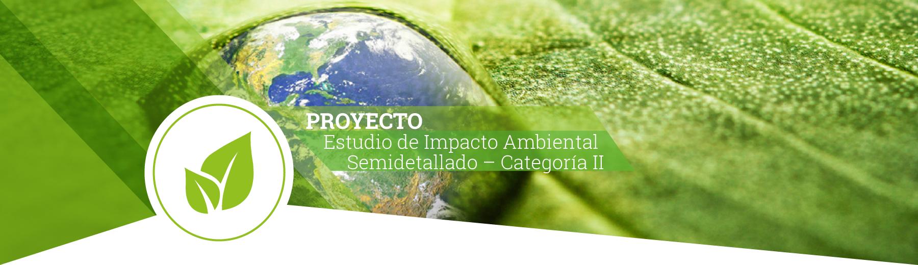 proyecto3-1