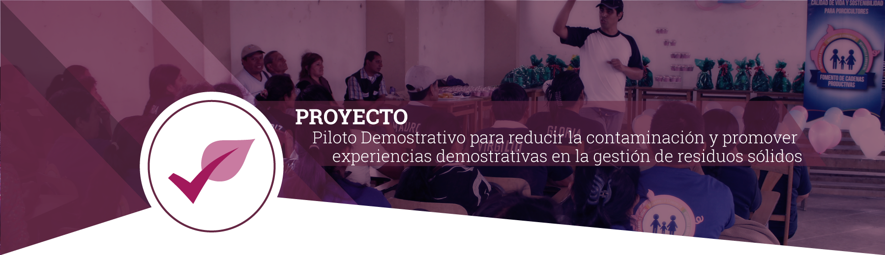 proyecto4-2