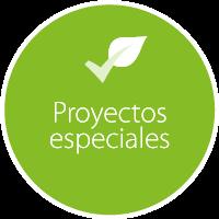pwi-proyecto-4